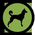 icone-programme-chien-2-educateur-canin-chien-chiot-saint-andre-evreux-eure-27-correcteure