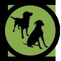 icone-programme-collectif-educateur-canin-chien-chiot-saint-andre-evreux-eure-27-correcteure