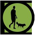 icone-transparent-balade-educateur-canin-chien-chiot-saint-andre-evreux-eure-27-correcteure