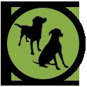 icone-transparent-chien-educateur-canin-chien-chiot-saint-andre-evreux-eure-27-correcteure